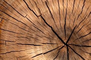 lumber-84678_960_720